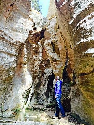 Avakas Gorge (Cyprus)