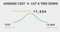 Average-cost-to-cut-tree-down.png