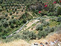Badan, in West Bank.jpg