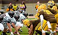 Baldwin Wallace Homecoming (15262370380).jpg