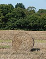 Bale, south of Lawns Wood, Staffordshire - geograph.org.uk - 979626.jpg