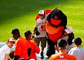 Baltimore Orioles bird and fans (7171471363).jpg