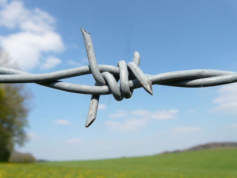 Datei:Barbed-wire-6904.jpg