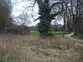 Barnes Common - geograph.org.uk - 1176538.jpg
