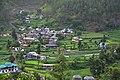 Batheri Village Mandi Himachal Jul20 D72 16806.jpg