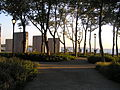 Battery park at sunset.JPG