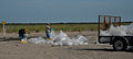 Beach Clean up during DWH (8744735662).jpg