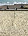 Beach Volleyball Court, Brighton Beach - geograph.org.uk - 1408695.jpg