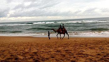 Beach camel ride.jpg