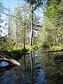Bear Pond Inlet - panoramio.jpg