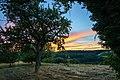 Beilstein - Billensbach - Streuobstwiese nach Sonnenuntergang.jpg