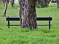Bench and Bark (14837567393).jpg