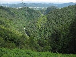 Besnica (stream)