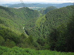Besnica (stream) - Besnica Valley