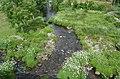 Between the lush green grass (50807555683).jpg