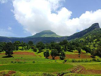 Maharashtra - Bramhagiri hills in Sahyadri mountain range (Western Ghats)