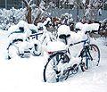 Bicycles snow Graz 2005.jpg