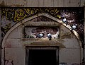 Birds in the arch of Wazir Khan Mosque.jpg