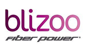 Blizoo - Image: Blizoo logo