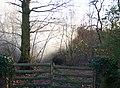 Bonfire in Wappenbury Wood - geograph.org.uk - 1130701.jpg