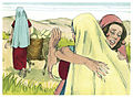 Book of Ruth Chapter 1-7 (Bible Illustrations by Sweet Media).jpg