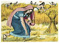 Book of Ruth Chapter 2-1 (Bible Illustrations by Sweet Media).jpg