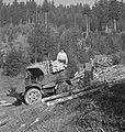 Bosbewerking, arbeiders, auto's, boomstammen, Bestanddeelnr 251-8991.jpg