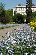 Botanical garden Krakow (2006-05-13) 01.jpg