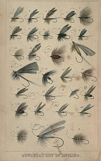 Artificial fly - Frontispiece from Bowlker's Art of Angling (1854) showing a variety of artificial flies