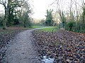 Brent Lodge Park from Churchfields Recreational Ground - geograph.org.uk - 1068316.jpg
