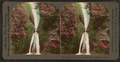 Bridal-veil Falls. Columbia River, Oregon, from Robert N. Dennis collection of stereoscopic views 3.png
