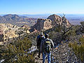 Bridge Mountain trail 2.jpg