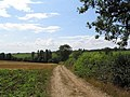 Bridleway near Saxelby Pastures - geograph.org.uk - 212192.jpg