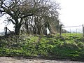 Bridleway to Rye Hill Farm - geograph.org.uk - 330649.jpg