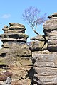 Brimham rocks from Flickr (A) 04.jpg