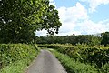 Broadwoodwidger, lane to Coombe Mill - geograph.org.uk - 448038.jpg