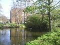 Brooklands Pond - geograph.org.uk - 2394675.jpg