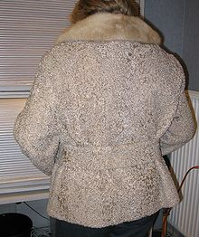 Bueno lamb fur jacket (back side).JPG