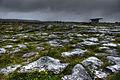 Burren (8050994739) (2).jpg