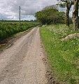 Bwlchgwynt farm road. - geograph.org.uk - 1313962.jpg