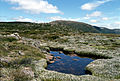 CSIRO ScienceImage 71 Bolster Moor Mt Field National Park.jpg