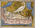 Caladrius royal MS 12.jpg