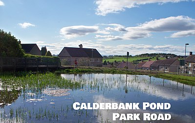 Calderbank pond park road