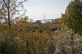 Camp X - A view of part of the site of Camp X looking toward Lake Ontario.