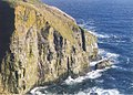 Cape St. Mary's Ecological Reserve - panoramio.jpg