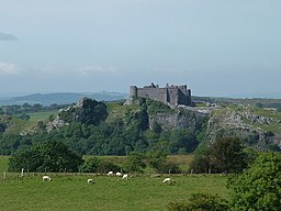 Carreg Cennen Castle - geograph.org.uk - 563742.jpg