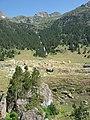 Cascada de Gorguetes Benasque 20180714 113226 Richtone(HDR).jpg