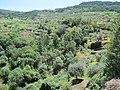 Castanheiro, 5140, Portugal - panoramio (49).jpg