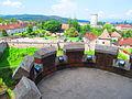 Castelul Huniazilor 42.JPG