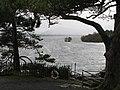 Castlelough Bay, Lough Leane, Killarney, Co. Kerry - geograph.org.uk - 372340.jpg